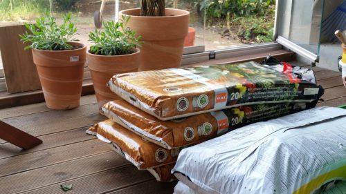 Gemüse selbst anbauen
