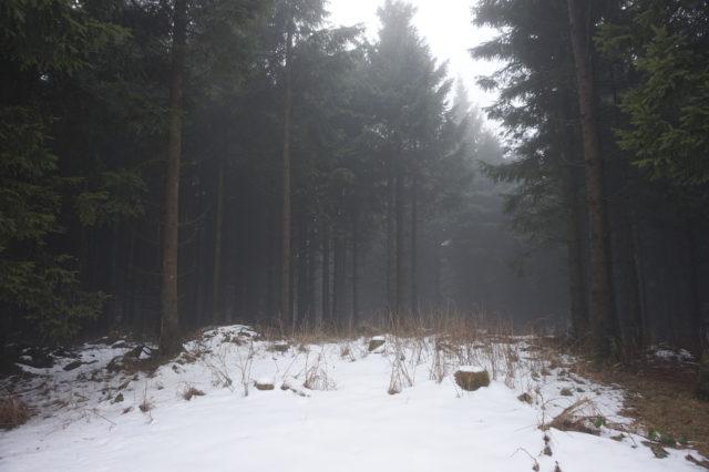 Wandern in Thüringen