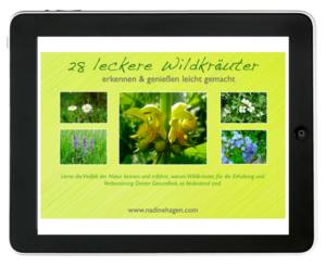 essbare Wildpflanzen - ebook Empfehlung