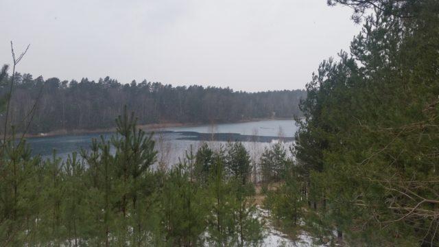 Felixsee Wanderung im Frühjahr