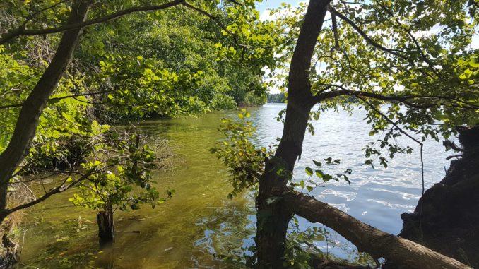 Die 4-Seen-Runde bei Schmöckwitz